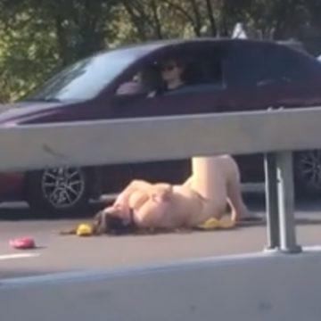 В Киеве голая женщина лежала посреди трассы, чтобы «найти любовь»