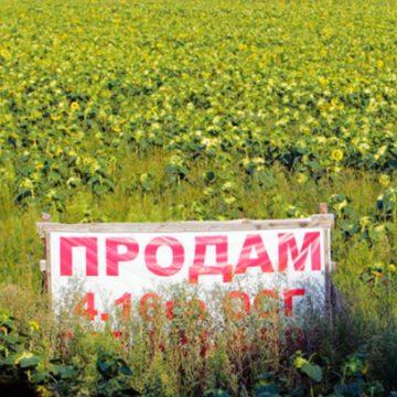 Нардепы разблокировали возможность подписания закона о моратории на продажу земли