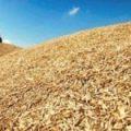 Нацбанк Украины сохраняет прогноз урожая зерновых в 2020г 72 млн тонн