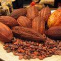 Какао подорожало до максимума за 8 месяцев на новостях о покупке Hershey бобов через биржу