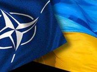 Байден выразил поддержку прогрессу Украины в вопросе получения членства в НАТО — Зеленский