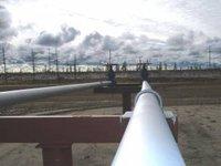 Путин о перспективах транзита газа через Украину: мы исходим из того, что поставки в Европу будут расти